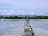 峨兰哥岛野生动植物保护区
