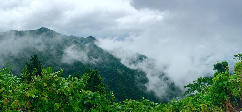 大别山薄刀峰景区旅游景点图片