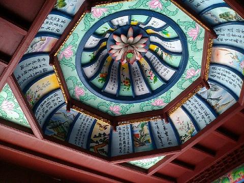 横龙寺的图片