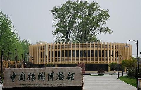 中国杨树博物馆
