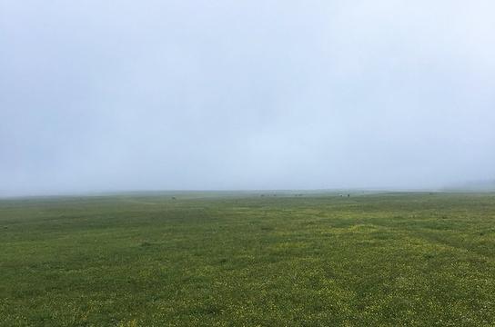 南泥河空中草原旅游景点图片