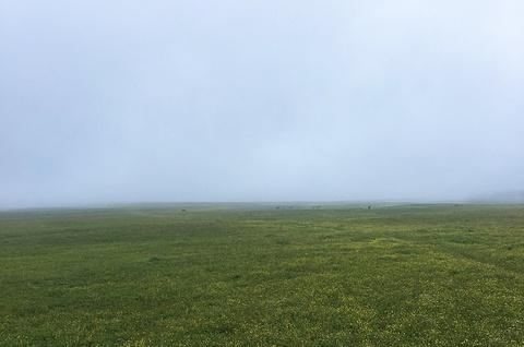 南泥河空中草原的图片