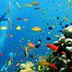 威海神游海洋世界