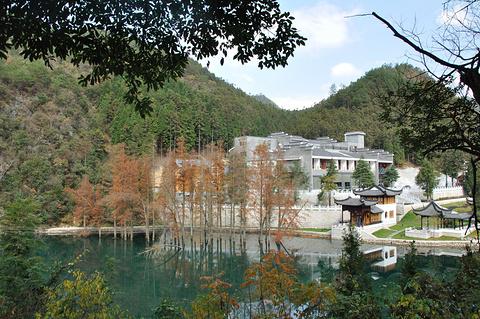 阳明山国家森林公园的图片