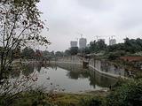 白庙子水库生态湿地公园