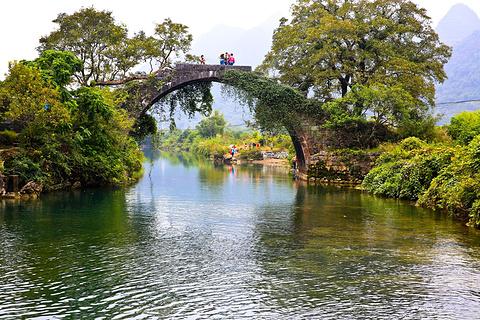 富里桥的图片
