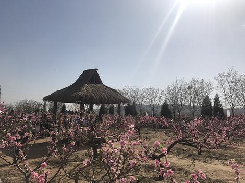 青草坡乡村庄园