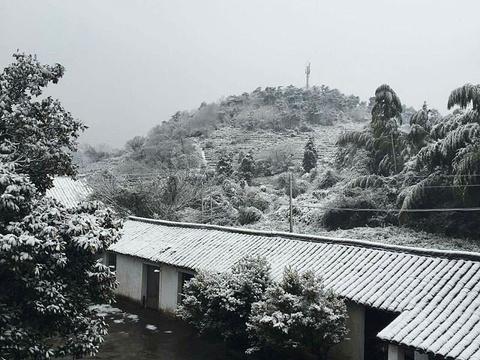 海盐县博物馆旅游景点图片