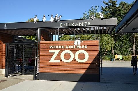 林地公园动物园的图片