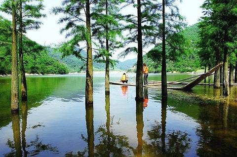 桃源生态旅游区的图片