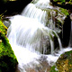 威虎山国家森林公园