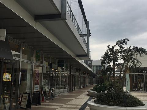 Q's Mall旅游景点图片