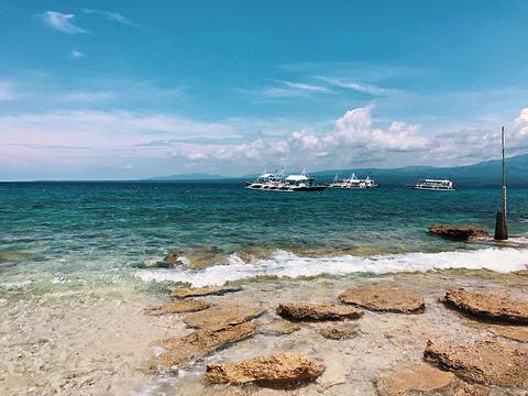 Moalboal Ocean Blue旅游景点图片