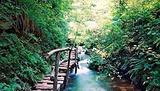 沟崖自然风景区