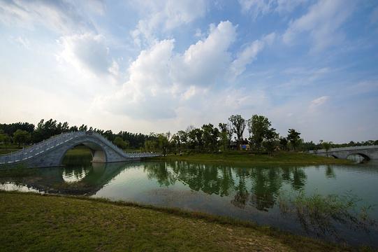 界首植物园旅游景点图片