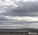爱尔兰镇自然保护区