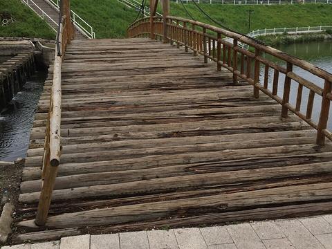 北海公园旅游景点图片