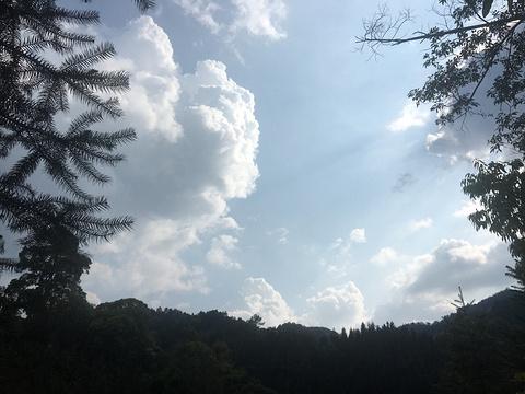大旭山瀑布群