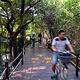 海南清澜红树林省级自然保护区