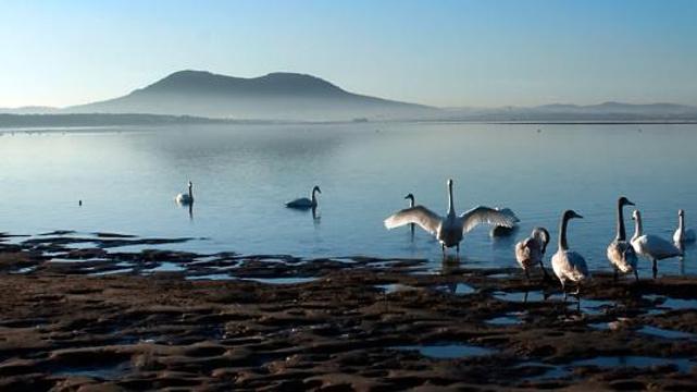 天鹅湖旅游景点图片