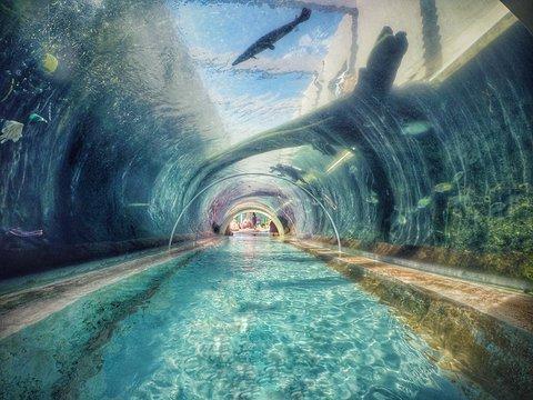 水上探险乐园