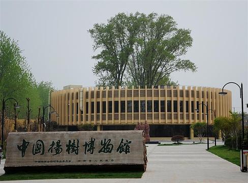中国杨树博物馆旅游景点图片