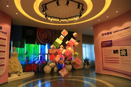 金昌花文化博览馆旅游景点图片