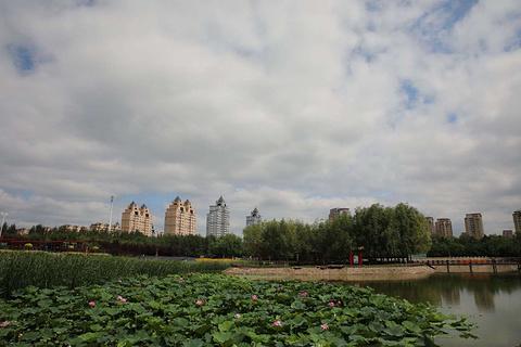 纳仁汗公园的图片