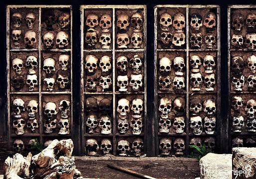 比如骷髅墙旅游景点图片