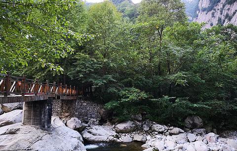 青峰峡森林公园