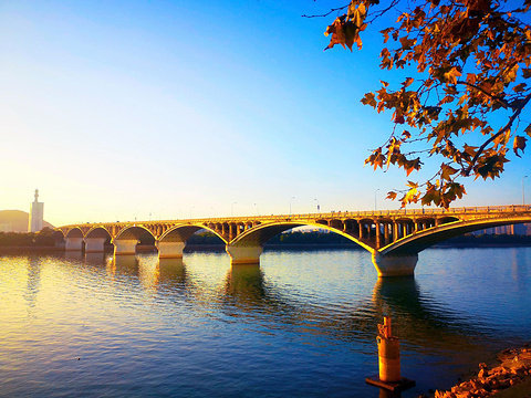橘子洲大桥旅游景点图片