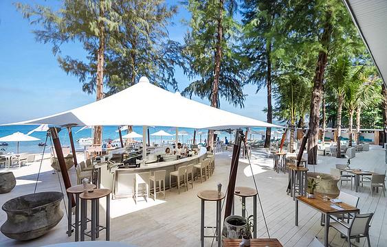 Catch Beach Club旅游景点图片