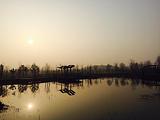北龙湖湿地公园
