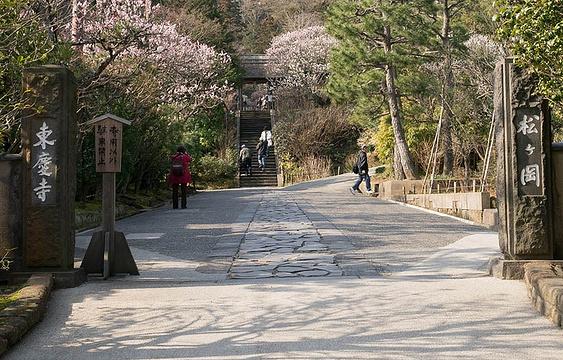 东庆寺旅游景点图片