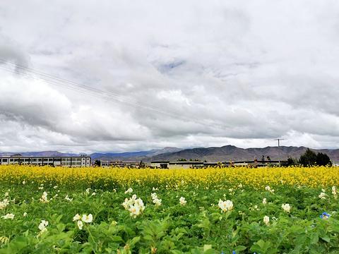 日喀则站旅游景点图片