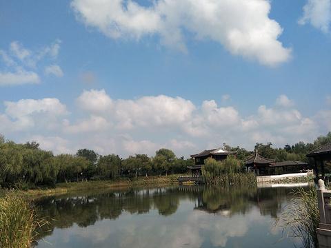 尚湖水上森林旅游景点图片