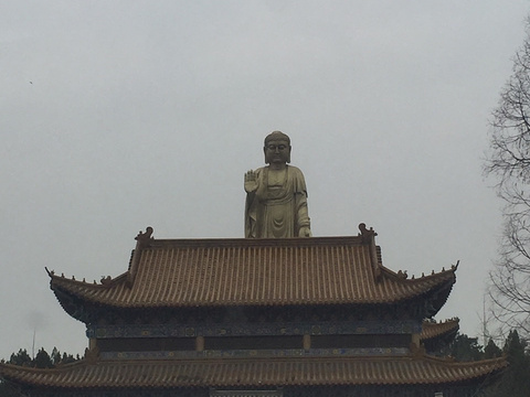张庄公园旅游景点图片