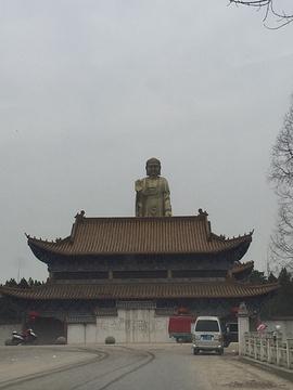 张庄公园的图片