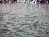 太平河风光带景区-游客休息区