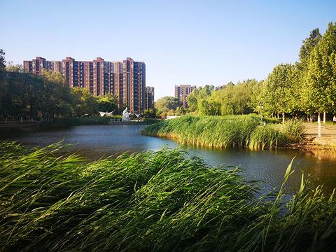 塔山河公园旅游景点图片