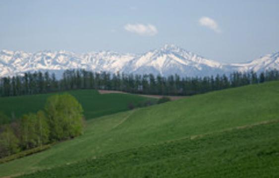 三爱之丘展望公园旅游景点图片