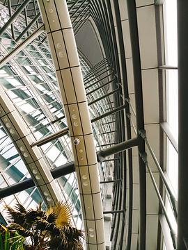 上海中心大厦的图片
