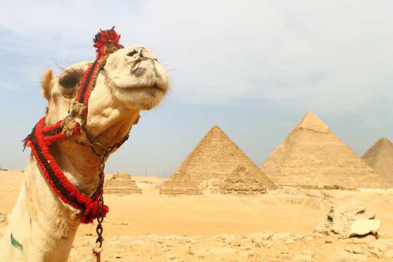 埃及深度6日线路
