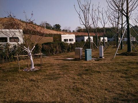 太湖一号房车露营公园