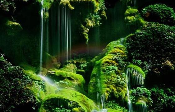 紫江地缝旅游景点图片