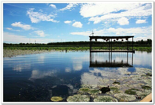那木斯莱湿地旅游景点图片