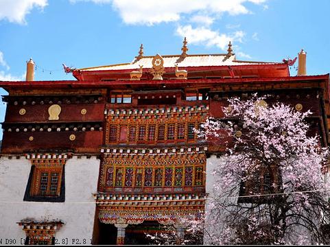 贡嘎郎吉岭寺旅游景点图片