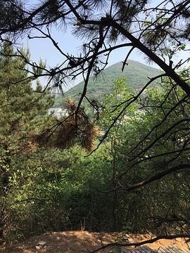 毛家峪长寿度假村元古奇石林的图片