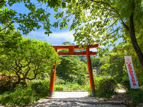九州岛经典环游5日线路