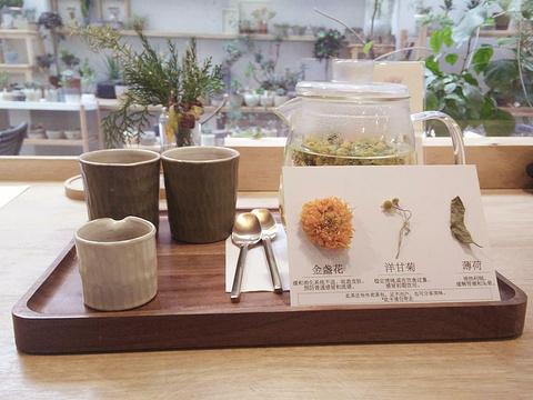 荒石公园自然主题商店旅游景点图片